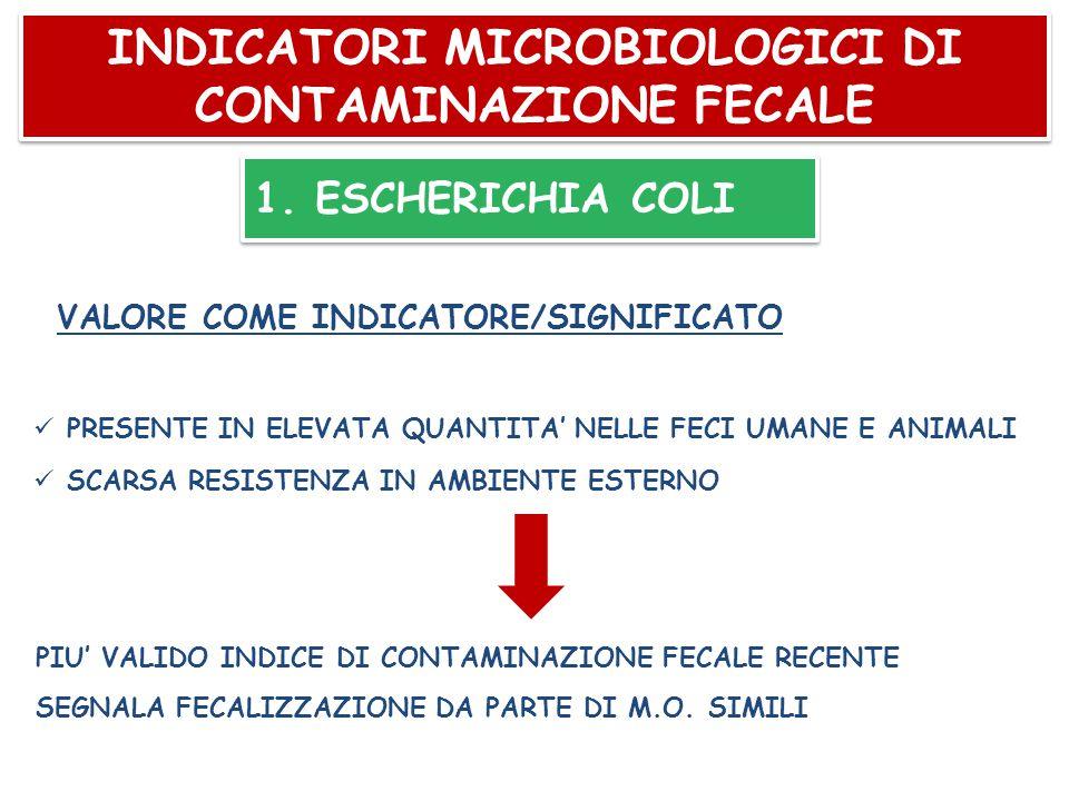 INDICATORI MICROBIOLOGICI DI CONTAMINAZIONE FECALE