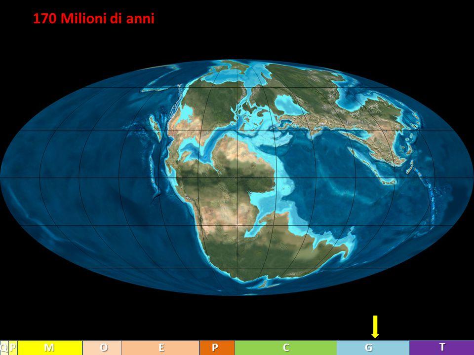 170 Milioni di anni Q P M O E P C G T