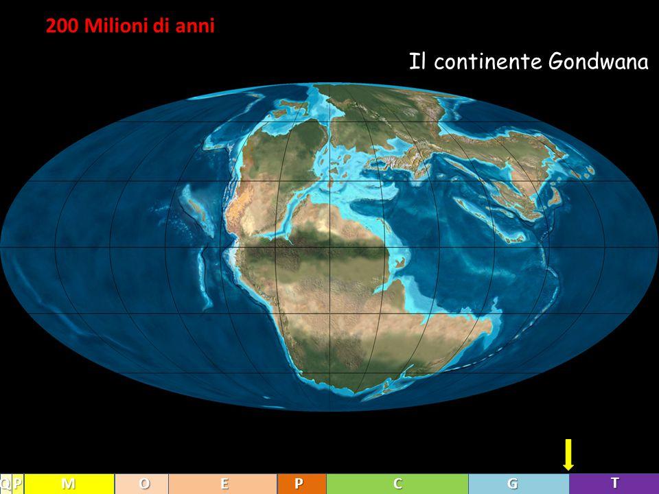 Il continente Gondwana