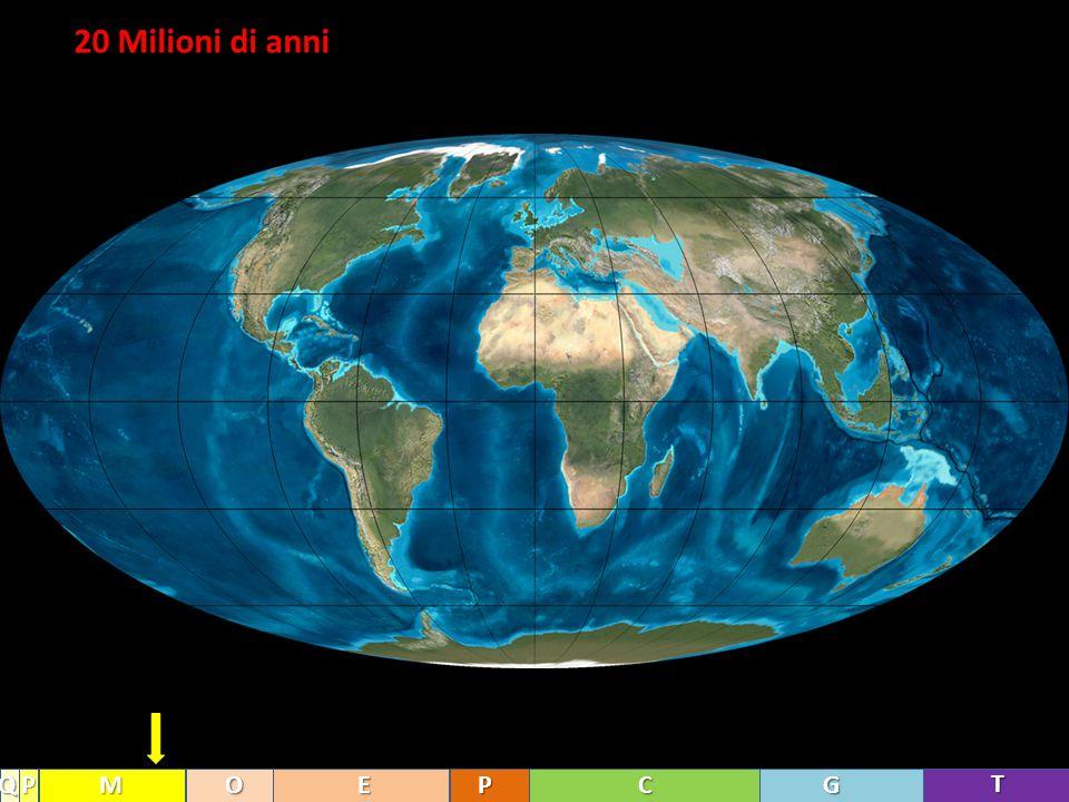 20 Milioni di anni Q P M O E P C G T