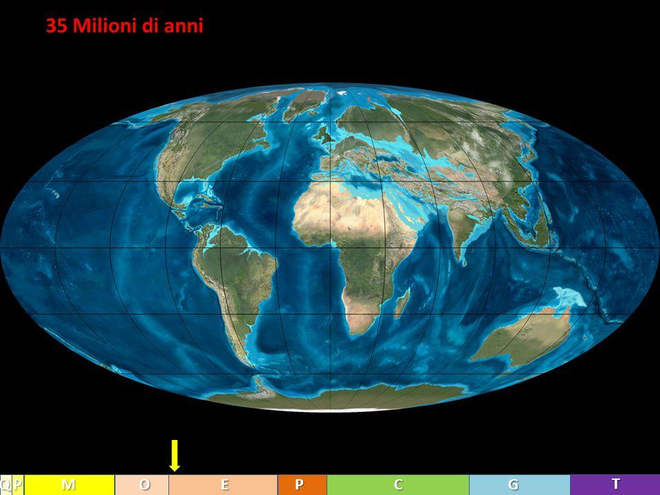 35 Milioni di anni Q P M O E P C G T