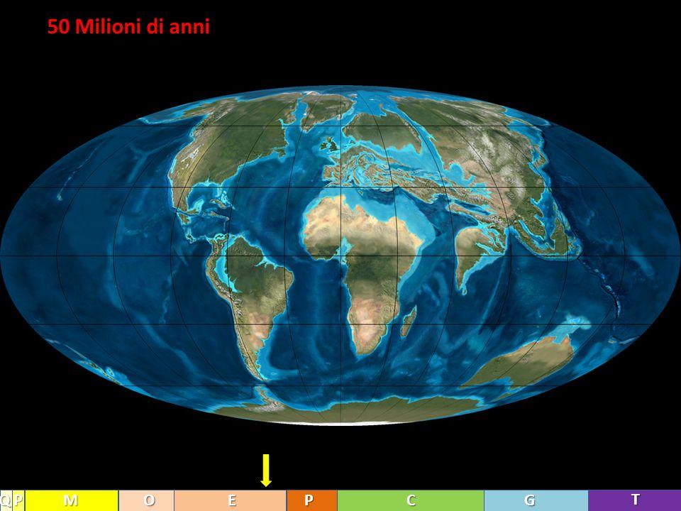 50 Milioni di anni Q P M O E P C G T