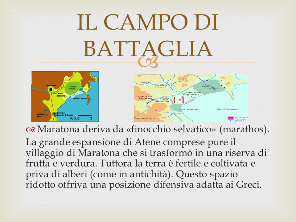 IL CAMPO DI BATTAGLIA Maratona deriva da «finocchio selvatico» (marathos).