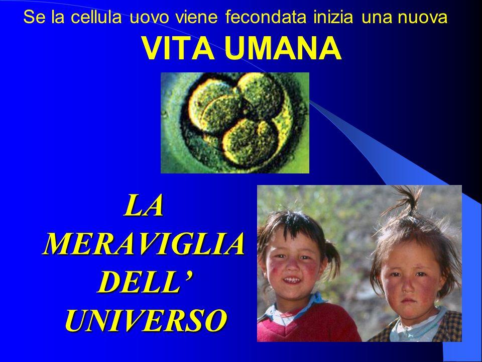 LA MERAVIGLIA DELL' UNIVERSO