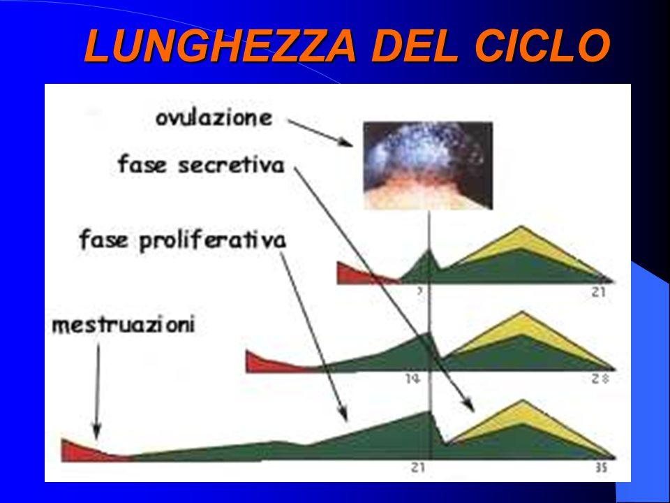 LUNGHEZZA DEL CICLO x
