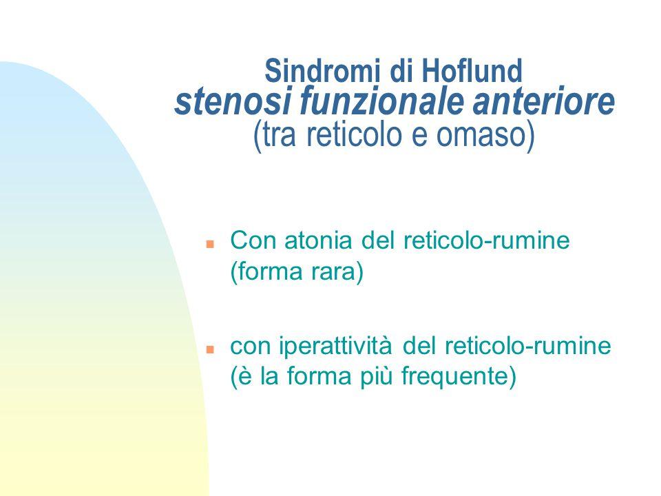 Sindromi di Hoflund stenosi funzionale anteriore (tra reticolo e omaso)