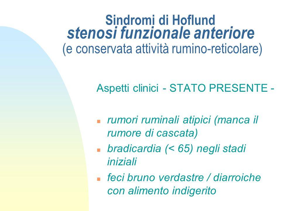 Sindromi di Hoflund stenosi funzionale anteriore (e conservata attività rumino-reticolare)
