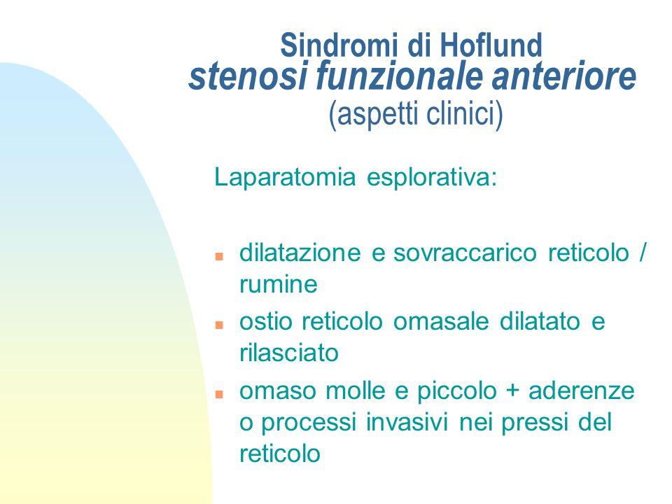 Sindromi di Hoflund stenosi funzionale anteriore (aspetti clinici)