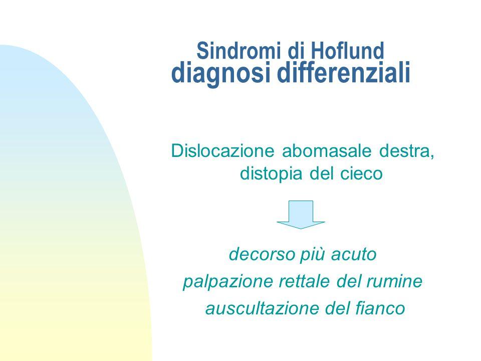Sindromi di Hoflund diagnosi differenziali