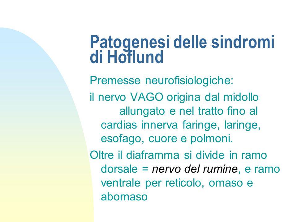 Patogenesi delle sindromi di Hoflund