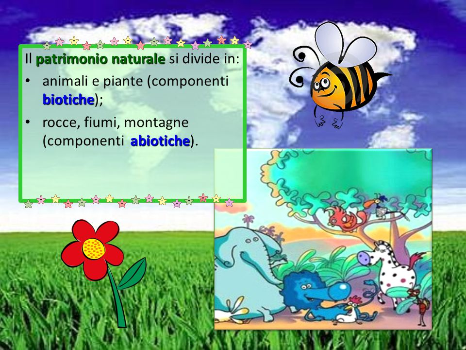 Il patrimonio naturale si divide in: