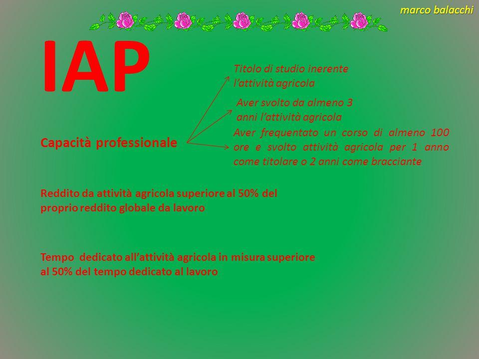 IAP Capacità professionale