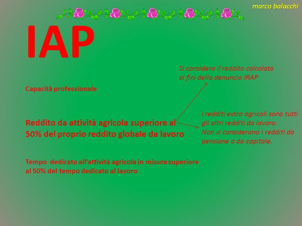 IAP Si considera il reddito calcolato ai fini della denuncia IRAP. Capacità professionale.