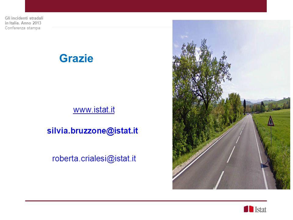 Grazie www.istat.it roberta.crialesi@istat.it silvia.bruzzone@istat.it