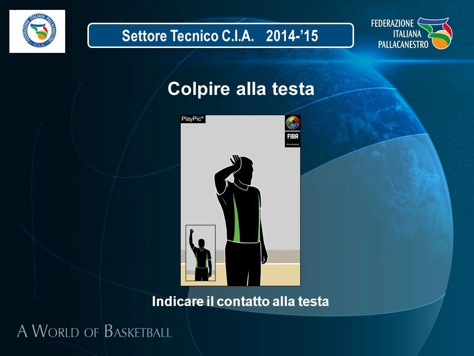 Colpire alla testa Settore Tecnico C.I.A. 2014-'15