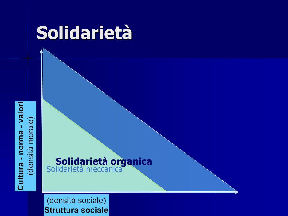 Solidarietà meccanica