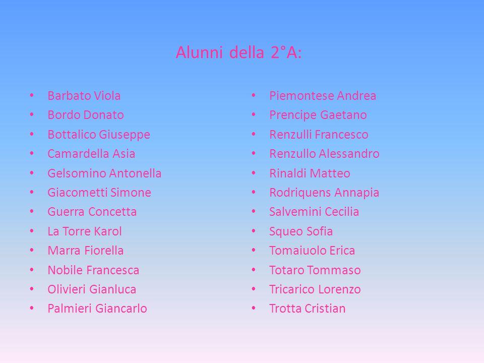 Alunni della 2°A: Barbato Viola Bordo Donato Bottalico Giuseppe