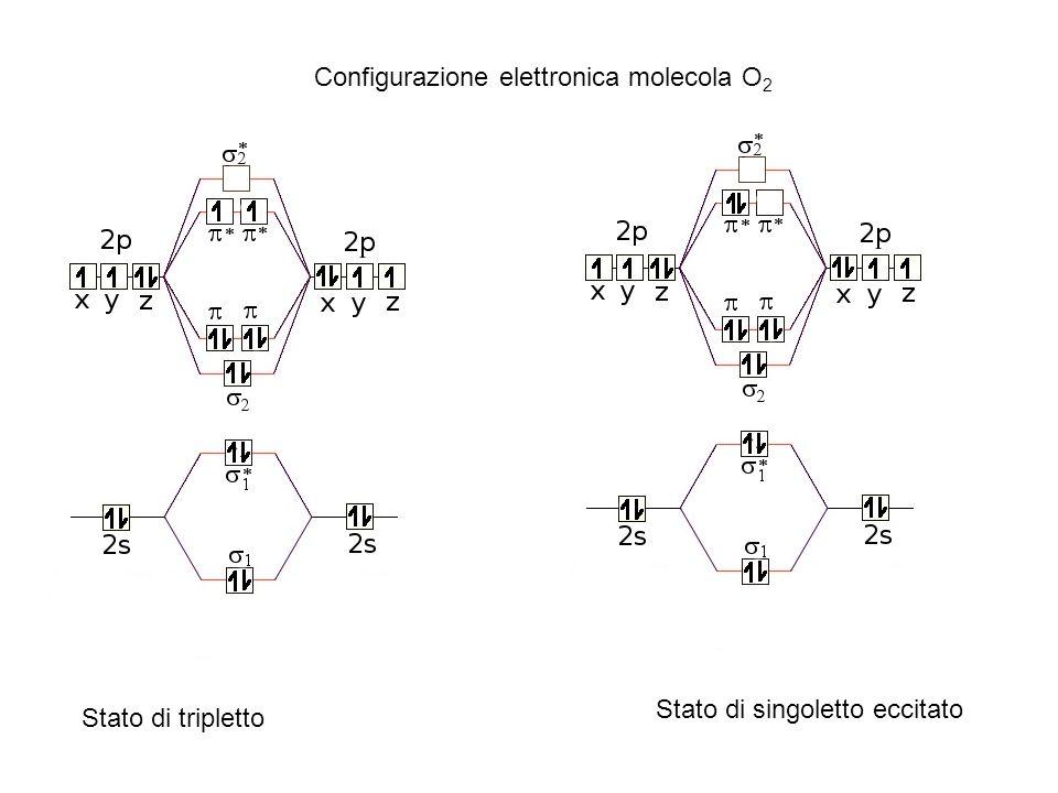 Configurazione elettronica molecola O2