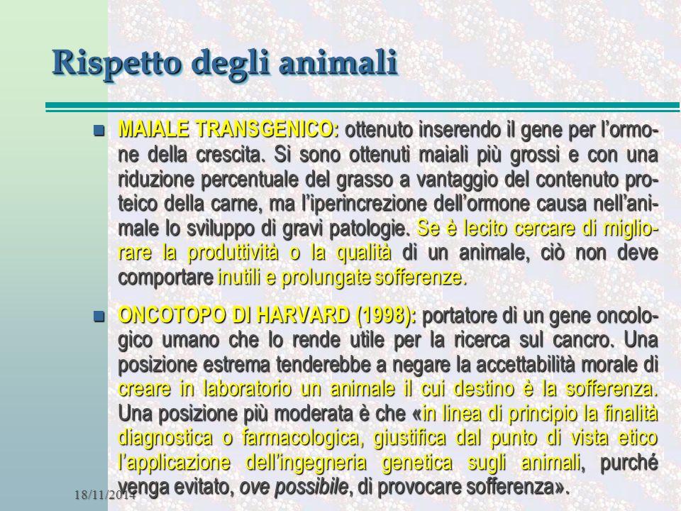 Rispetto degli animali