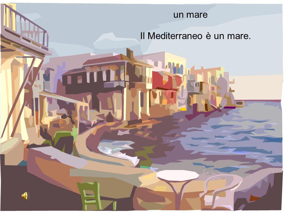 un mare Il Mediterraneo è un mare.