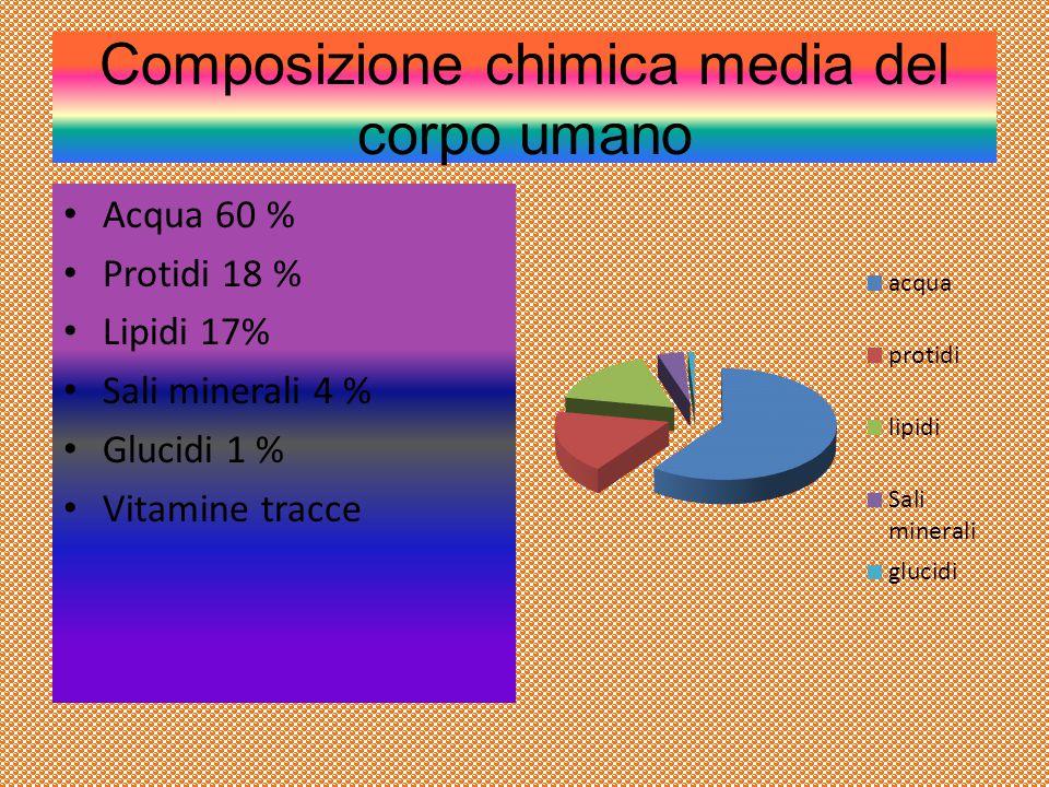 Composizione chimica media del corpo umano