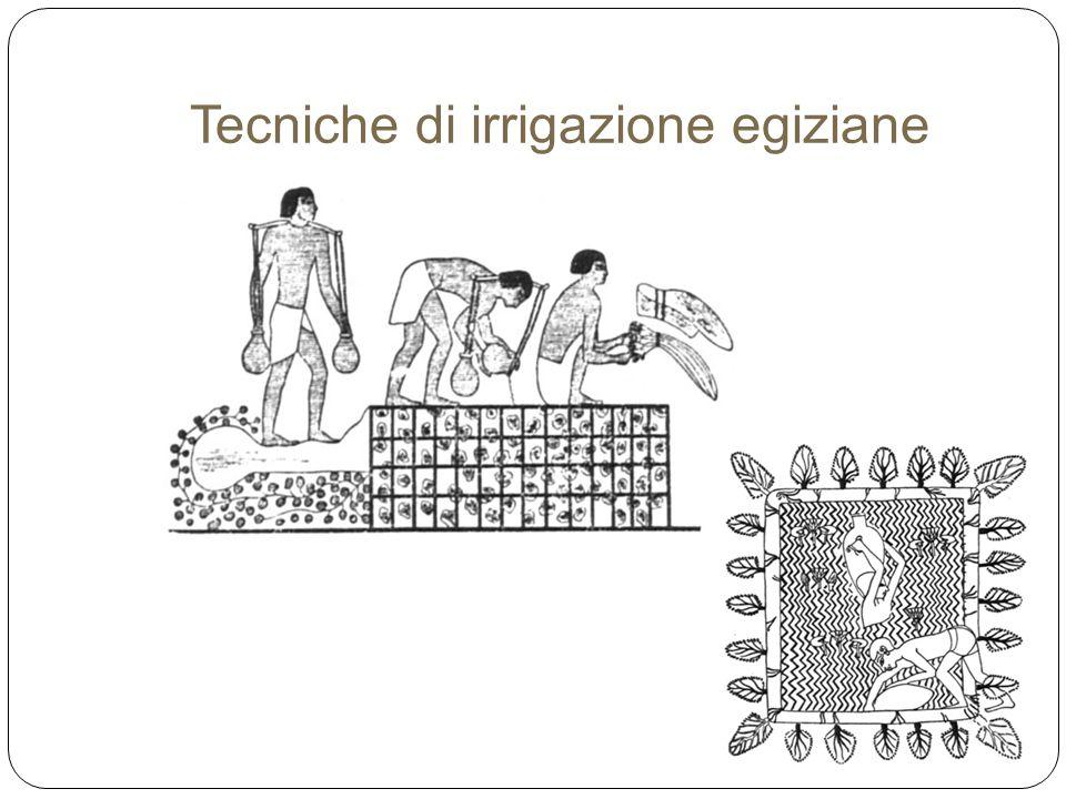 Tecniche di irrigazione egiziane