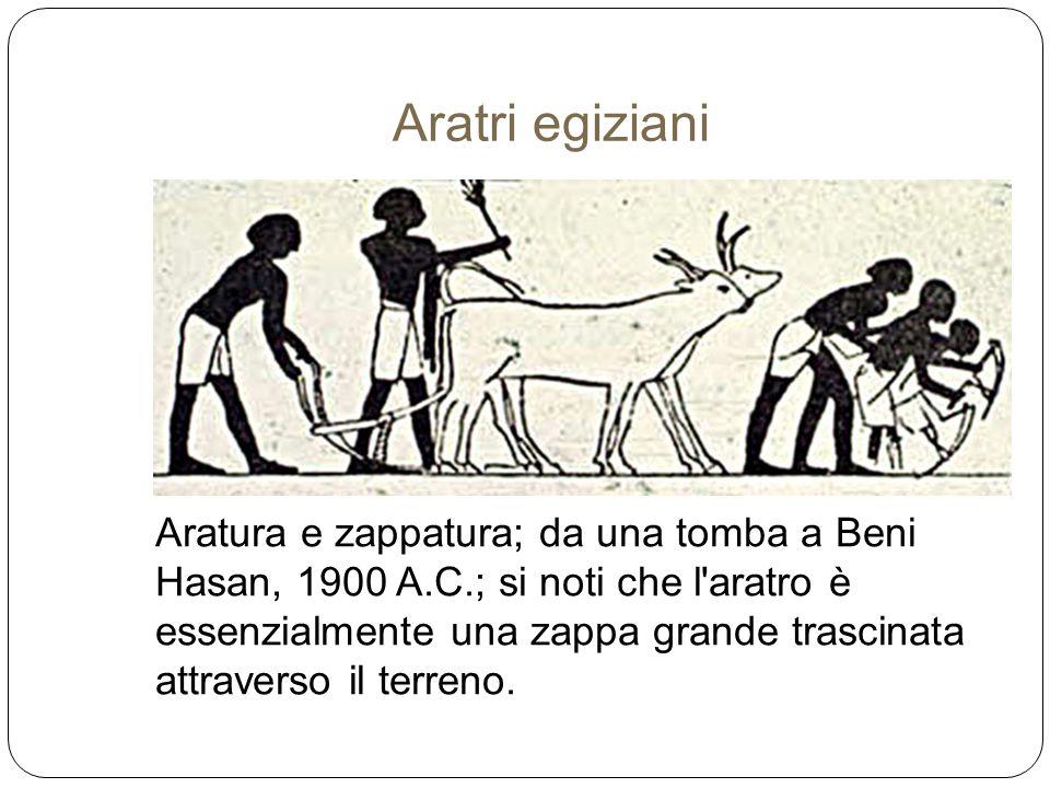 Aratri egiziani