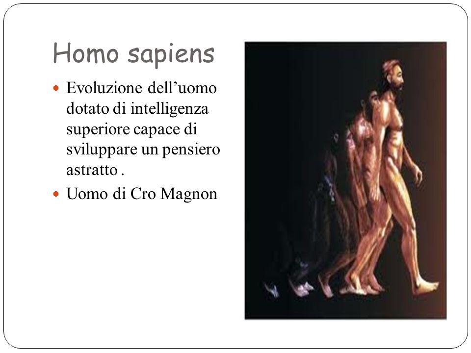 Homo sapiens Evoluzione dell'uomo dotato di intelligenza superiore capace di sviluppare un pensiero astratto .