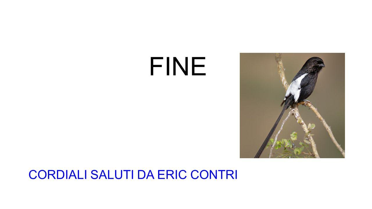 FINE CORDIALI SALUTI DA ERIC CONTRI
