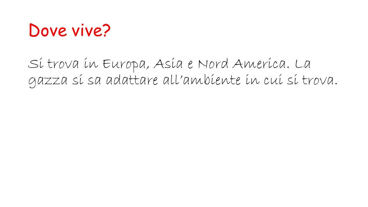 Dove vive. Si trova in Europa, Asia e Nord America.