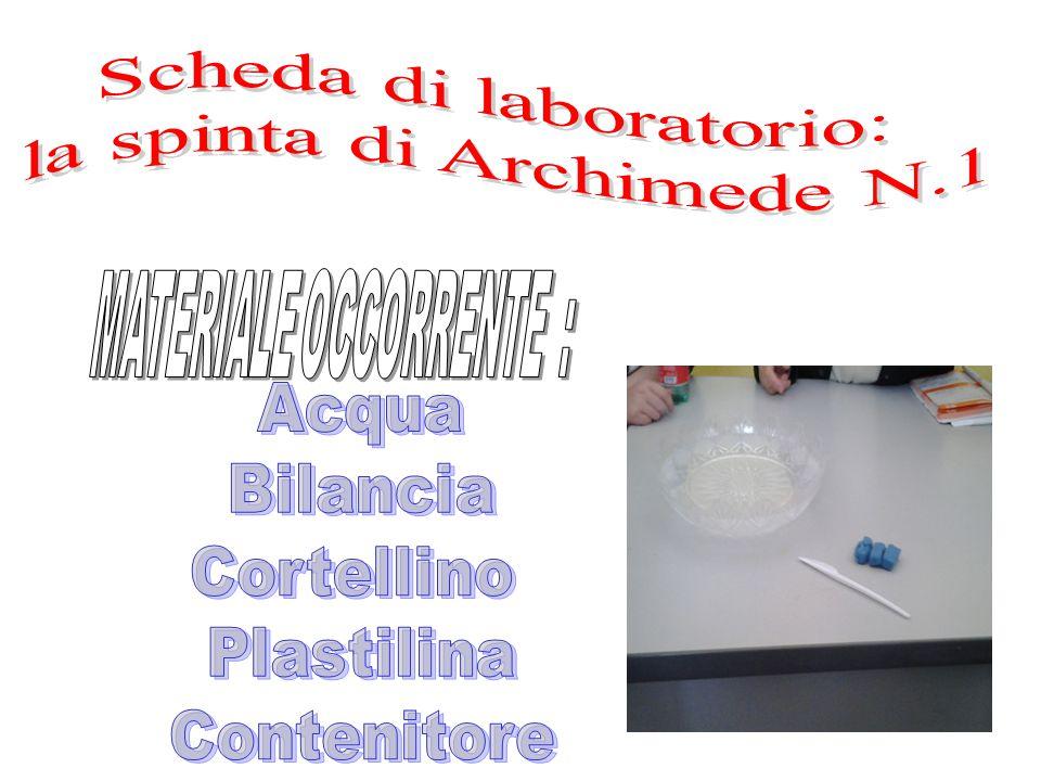 Scheda di laboratorio: la spinta di Archimede N.1
