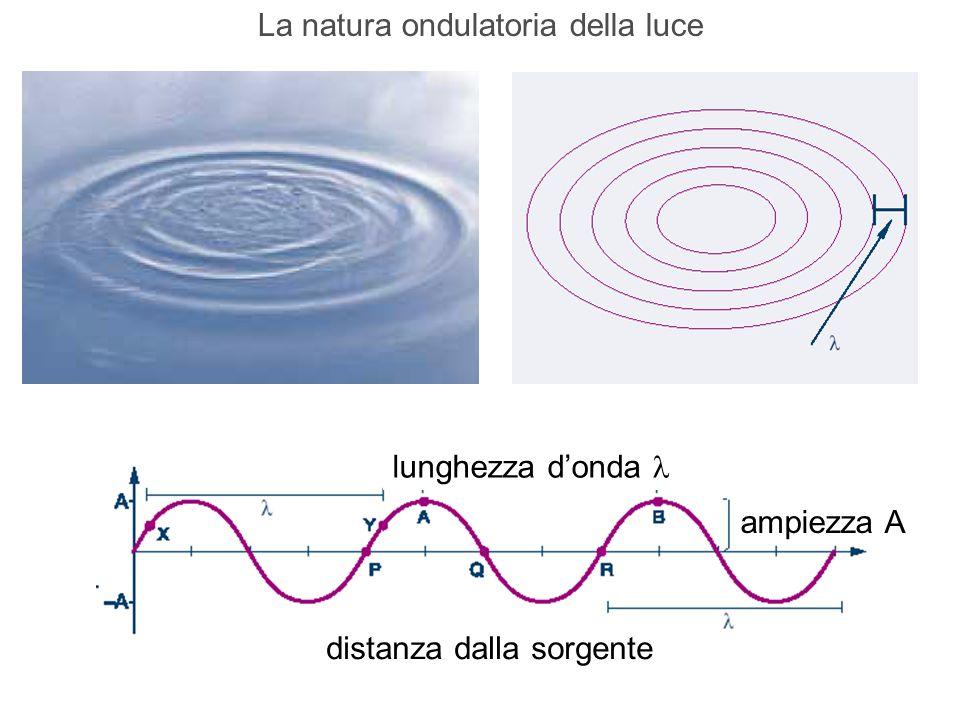 La natura ondulatoria della luce