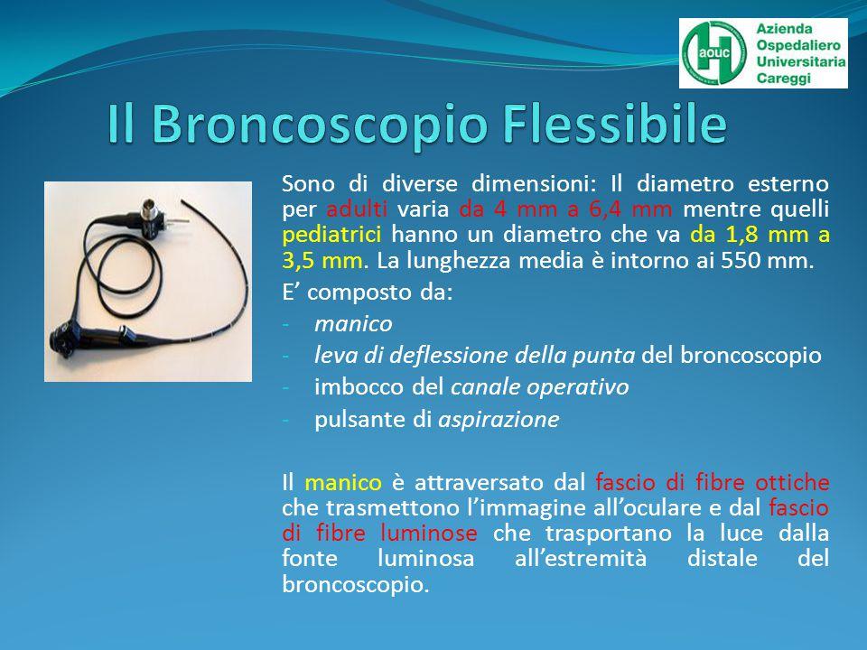 Il Broncoscopio Flessibile