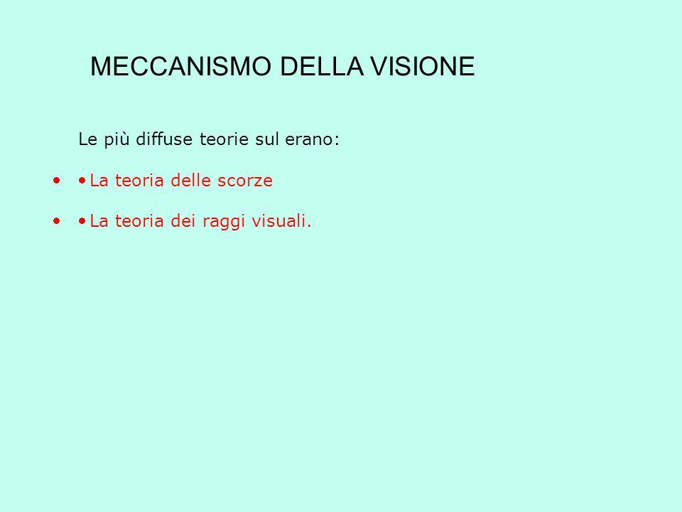 MECCANISMO DELLA VISIONE