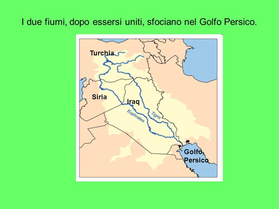 I due fiumi, dopo essersi uniti, sfociano nel Golfo Persico.