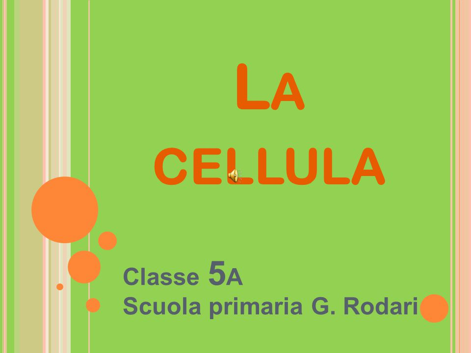 Classe 5A Scuola primaria G. Rodari