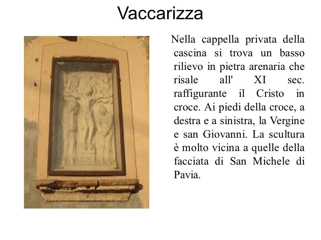 Vaccarizza