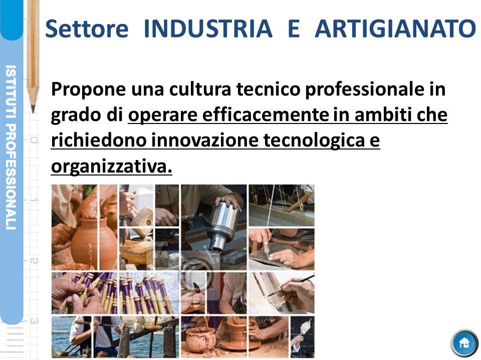 Settore INDUSTRIA E ARTIGIANATO