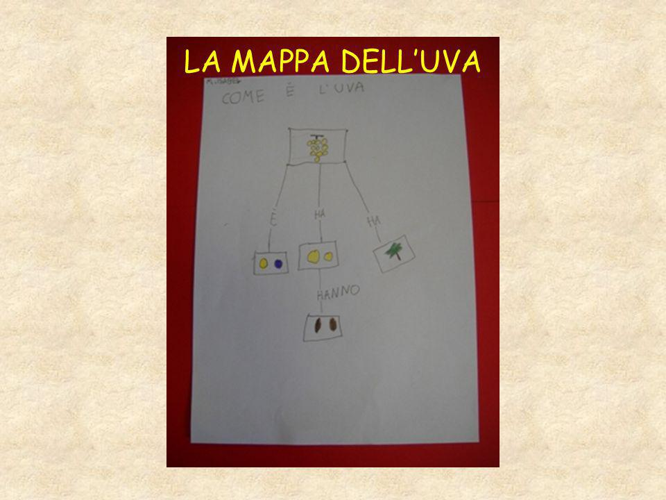 LA MAPPA DELL'UVA