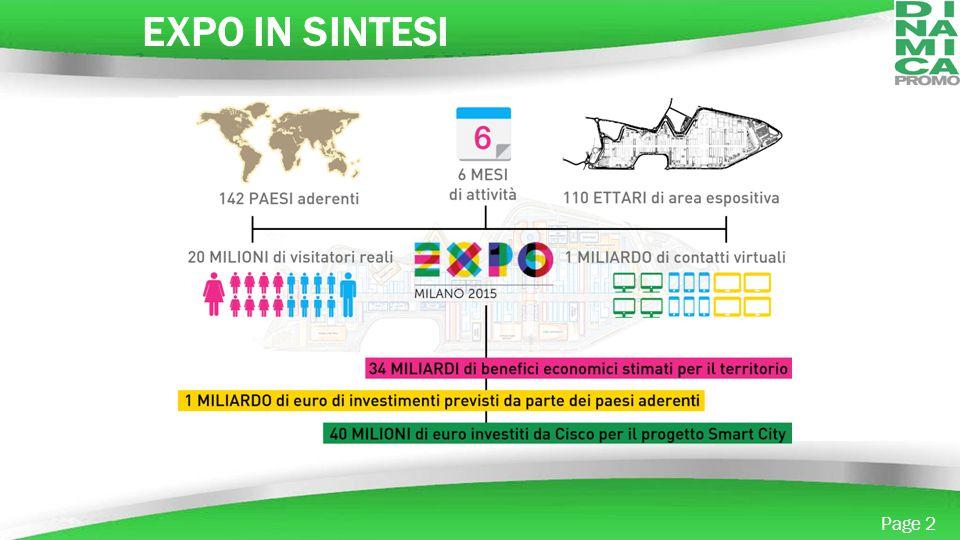 EXPO IN SINTESI