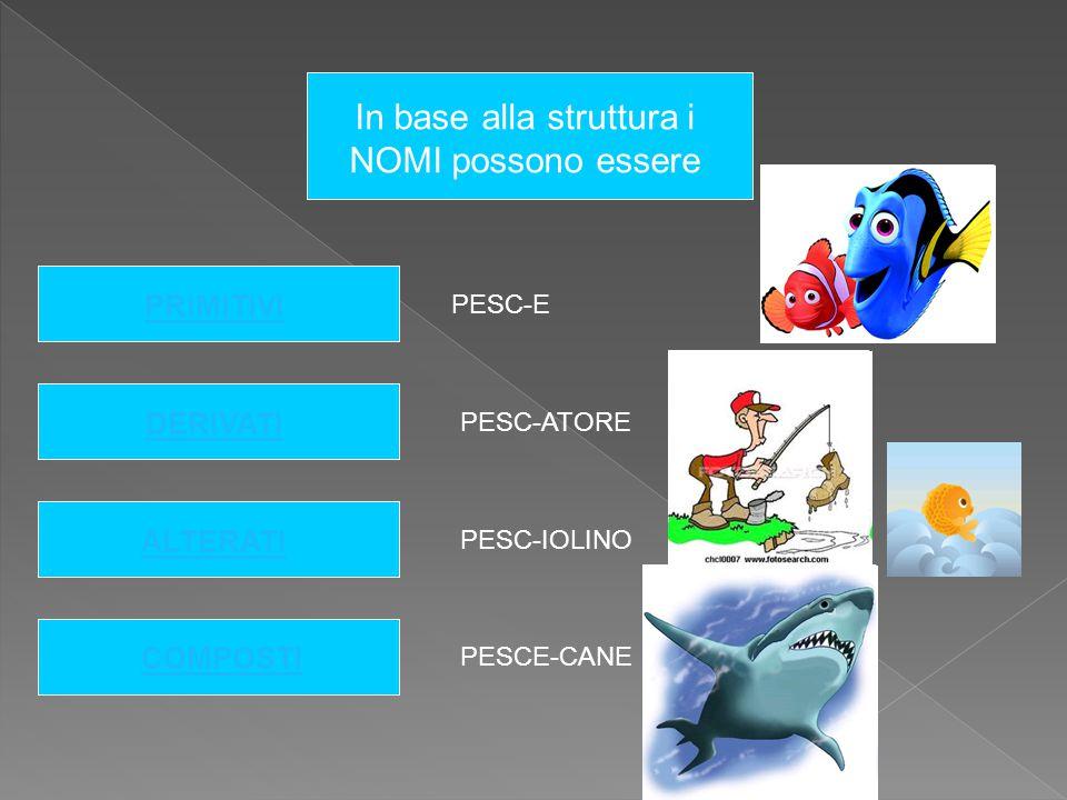In base alla struttura i NOMI possono essere