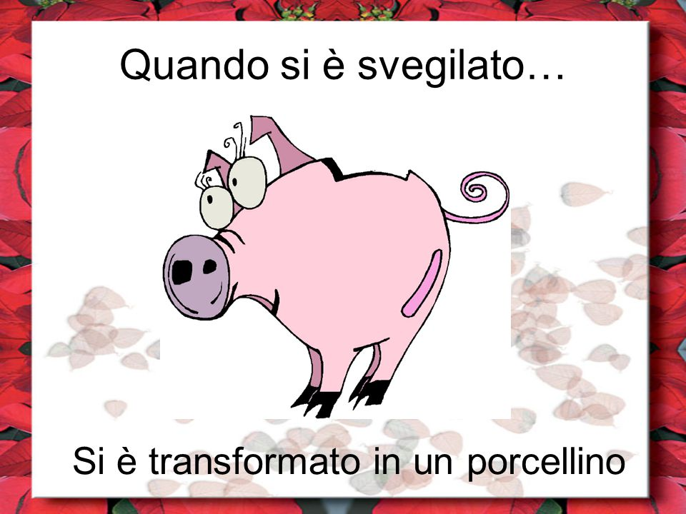 Si è transformato in un porcellino