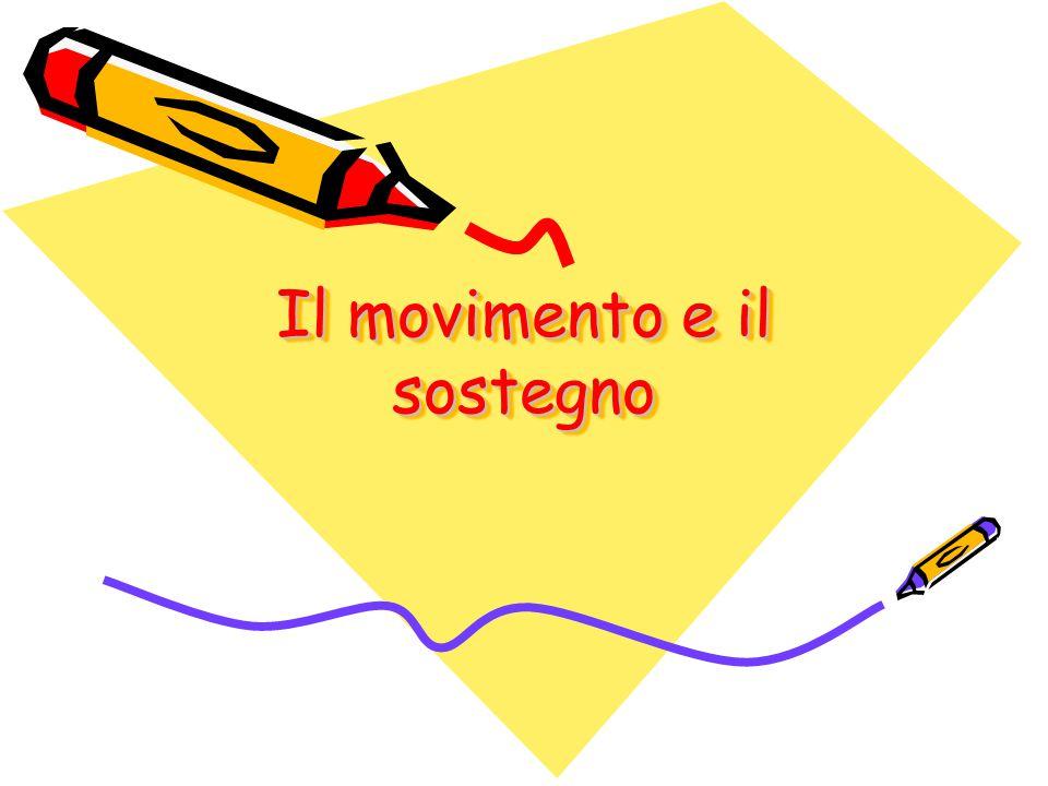 Il movimento e il sostegno