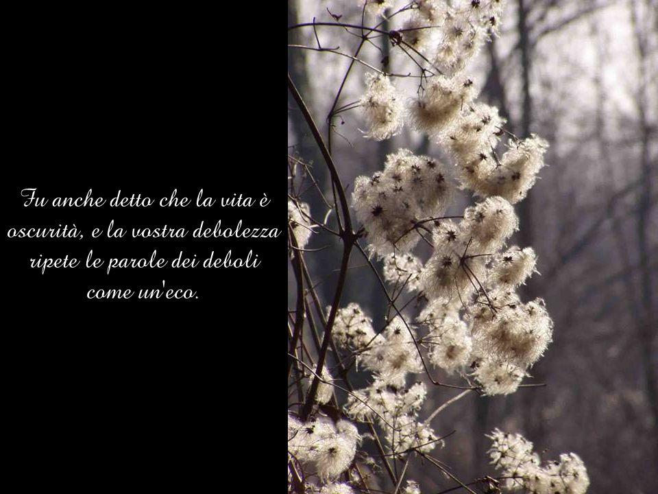 Fu anche detto che la vita è oscurità, e la vostra debolezza ripete le parole dei deboli come un eco.