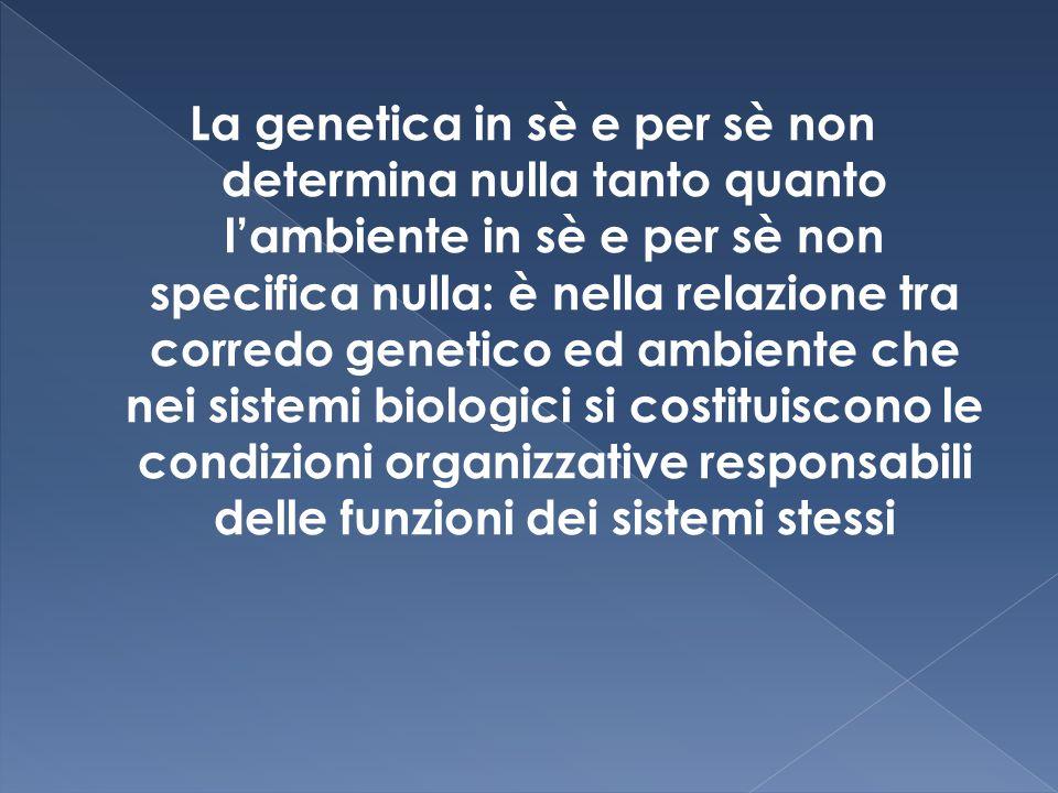 La genetica in sè e per sè non determina nulla tanto quanto l'ambiente in sè e per sè non specifica nulla: è nella relazione tra corredo genetico ed ambiente che nei sistemi biologici si costituiscono le condizioni organizzative responsabili delle funzioni dei sistemi stessi
