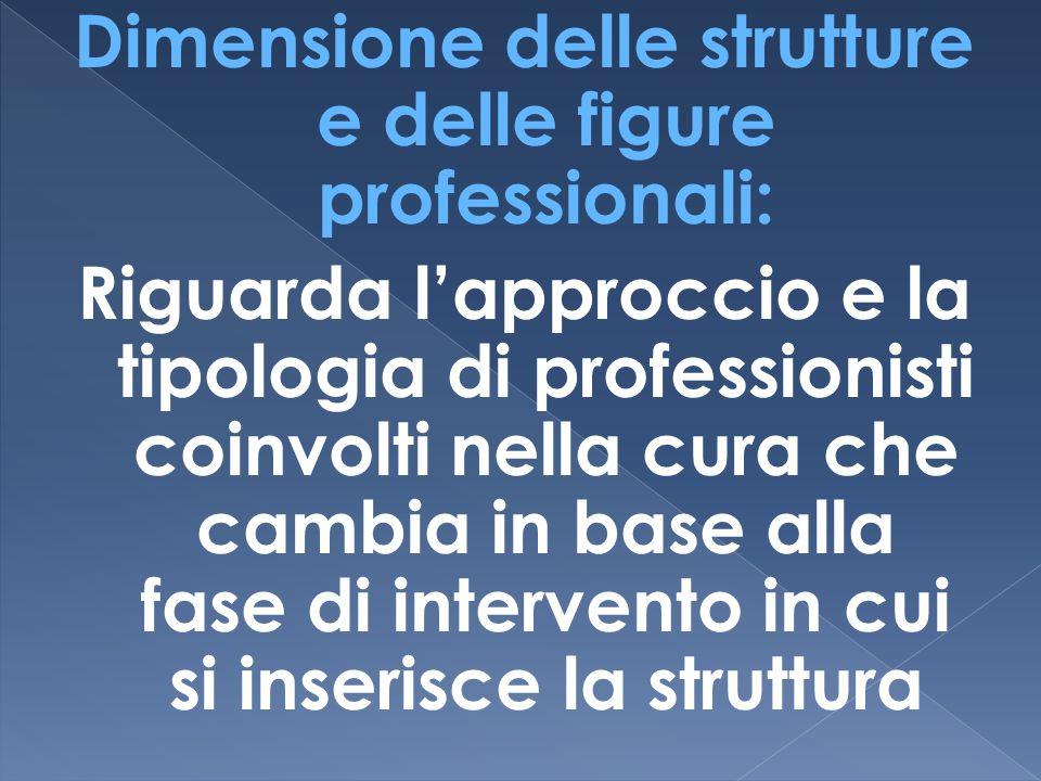 Dimensione delle strutture e delle figure professionali: Riguarda l'approccio e la tipologia di professionisti coinvolti nella cura che cambia in base alla fase di intervento in cui si inserisce la struttura