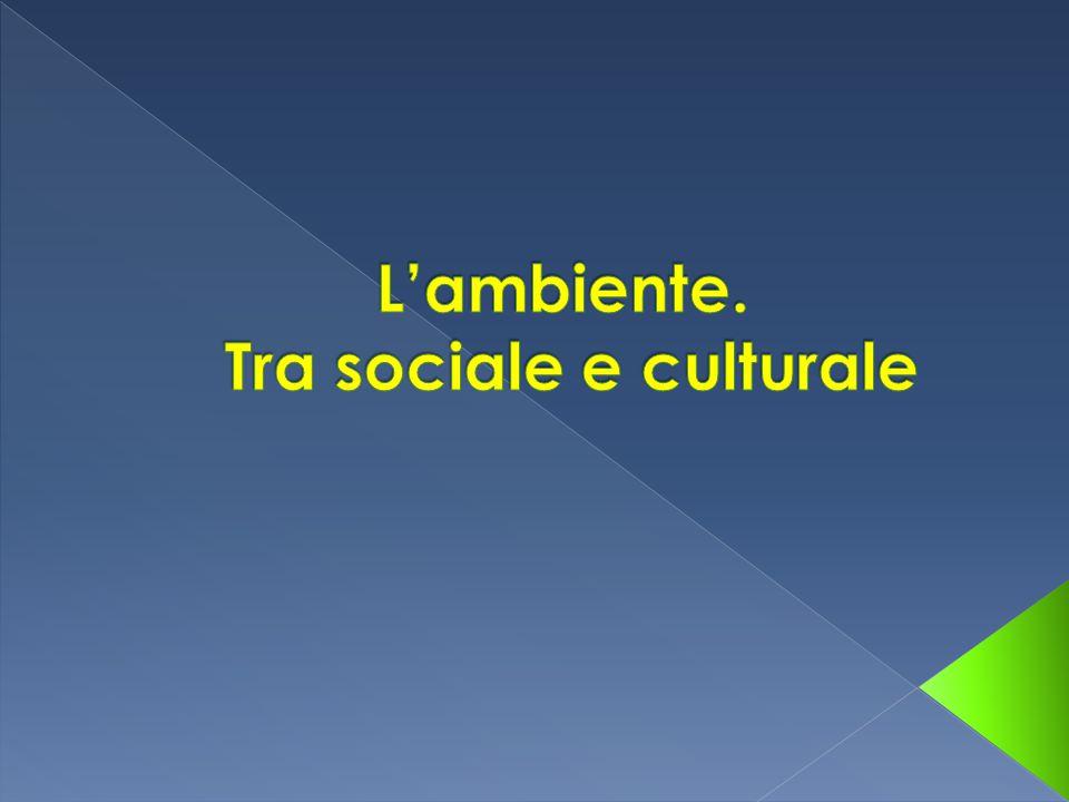 L'ambiente. Tra sociale e culturale