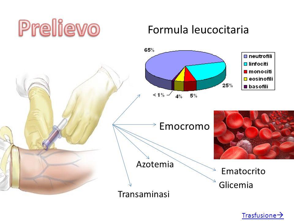 Prelievo Formula leucocitaria Emocromo Azotemia Ematocrito Glicemia