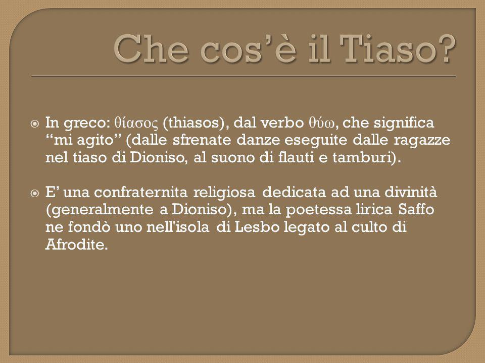 Che cos'è il Tiaso