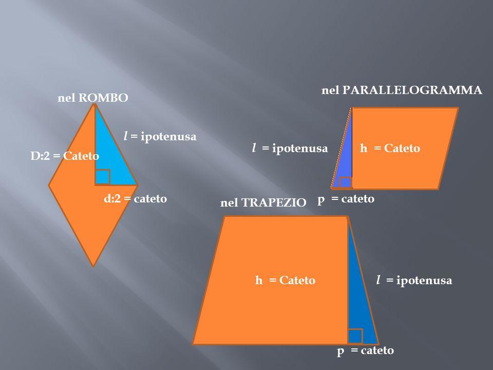 nel PARALLELOGRAMMA nel ROMBO. l = ipotenusa. l = ipotenusa. h = Cateto. D:2 = Cateto. d:2 = cateto.